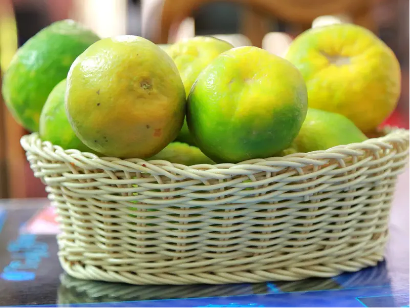 Mosambi Lemon (Image Credit - Google)