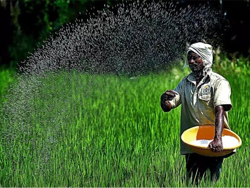 DAP Fertilizer (Image Credit - Google)