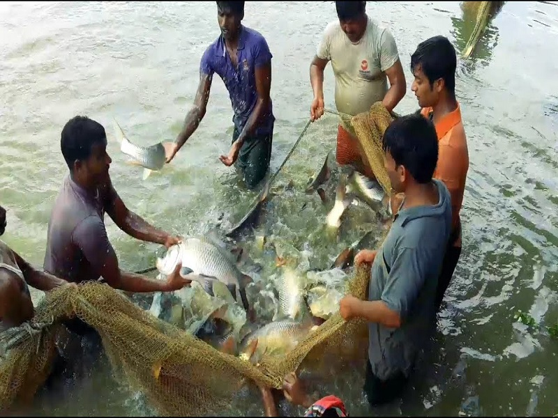 Aquaculture (Image Credit - Google)