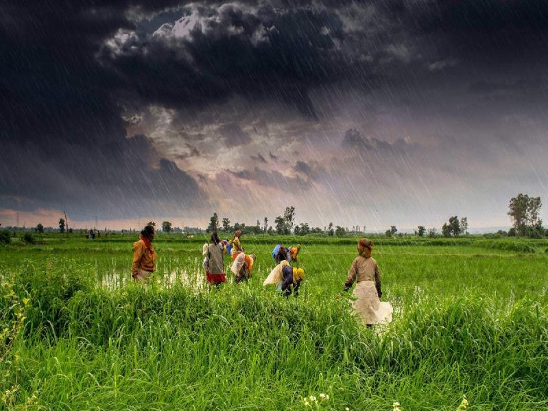 Monsoon (Image Credit - Google)