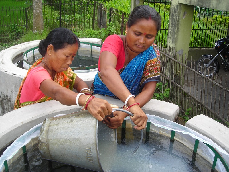 Women fish farmer (Image Credit - Google)