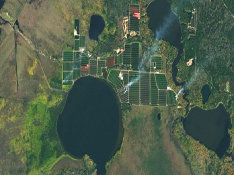 Satellite (Image Credit - Google)