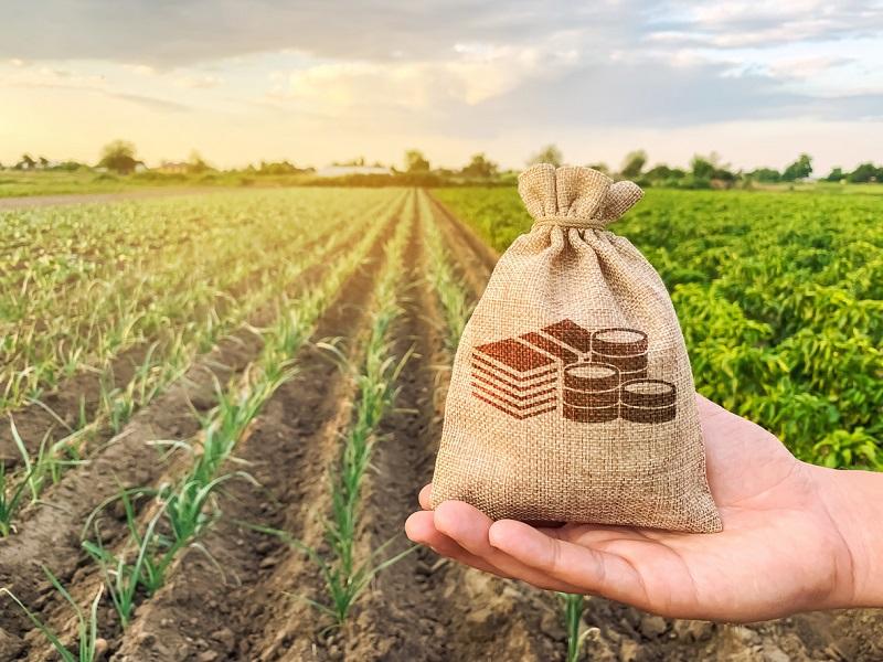Agri Loan (Image Credit - Google)