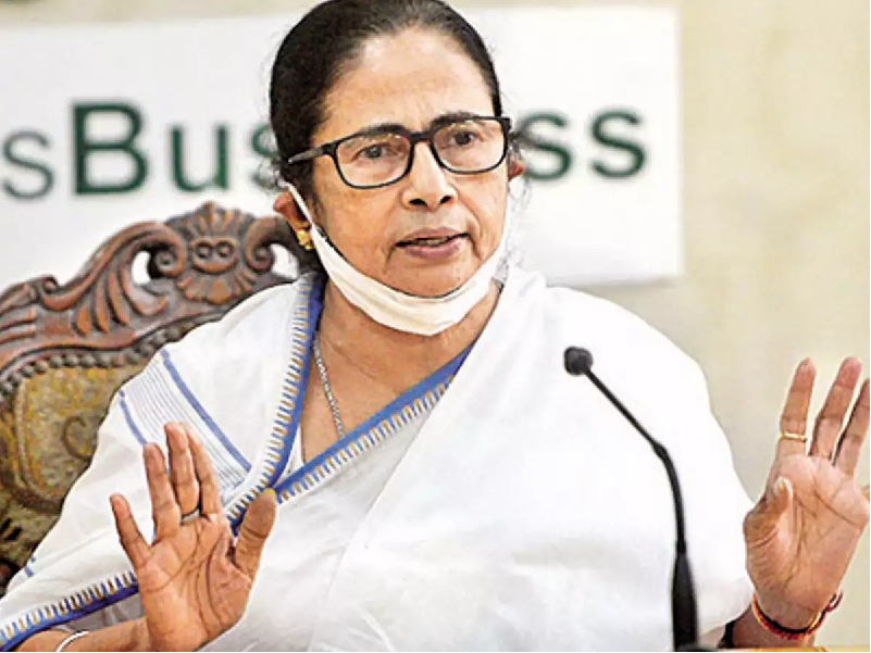 CM Mamata Banerjee (Image Credit - Google)