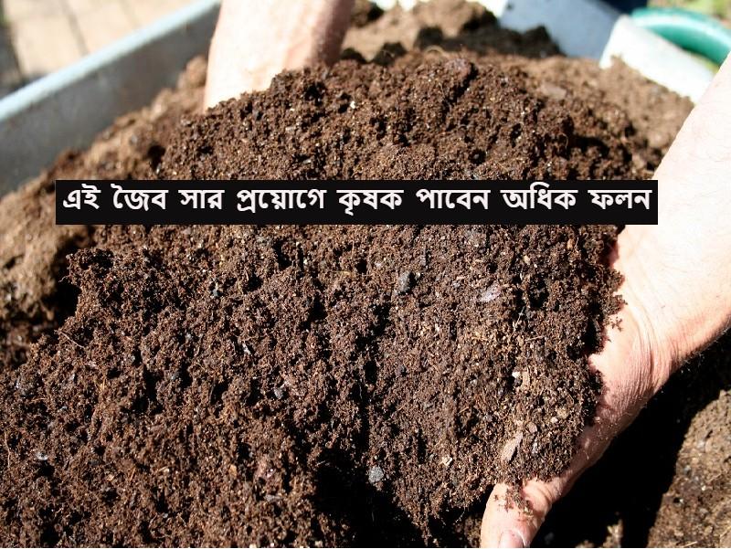 Organic fertilizer - গোবর ও গোমূত্র থেকে চাষের জন্য জৈব সার কীভাবে তৈরি করবেন?