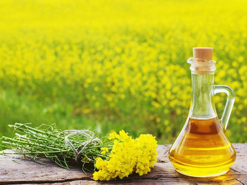 Mustard oil (Image Credit - Google)