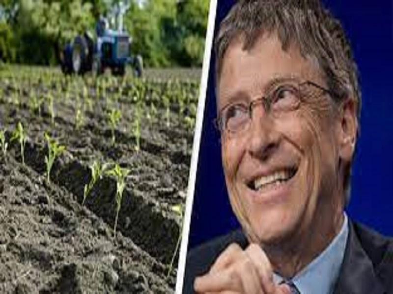 Bill Gates (Image Credit - Google)