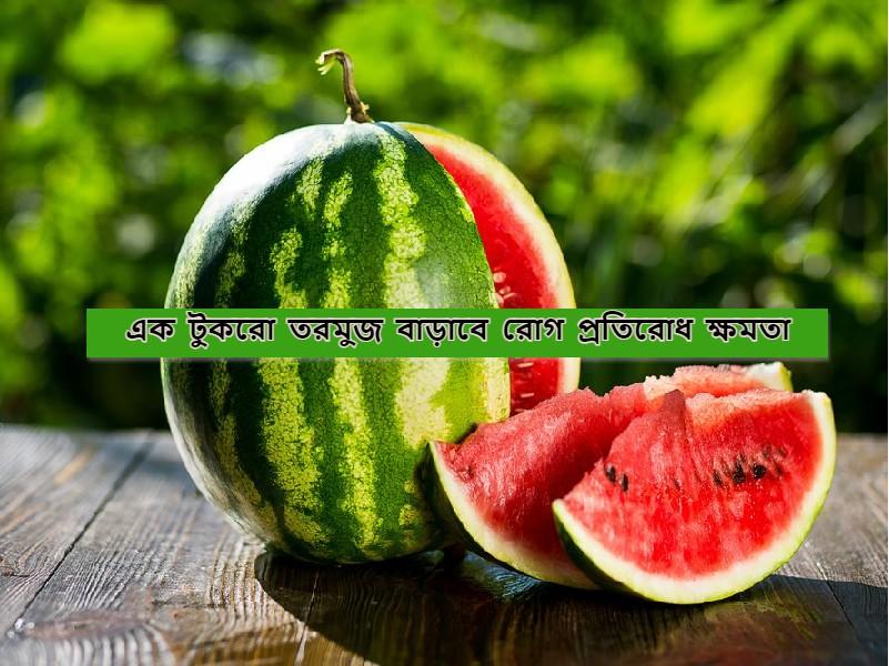 Watermelon Health Benefits – এই সময়ে ফলের তালিকায় অবশ্যই রাখুন তরমুজ, আর রোগ থেকে পান মুক্তি