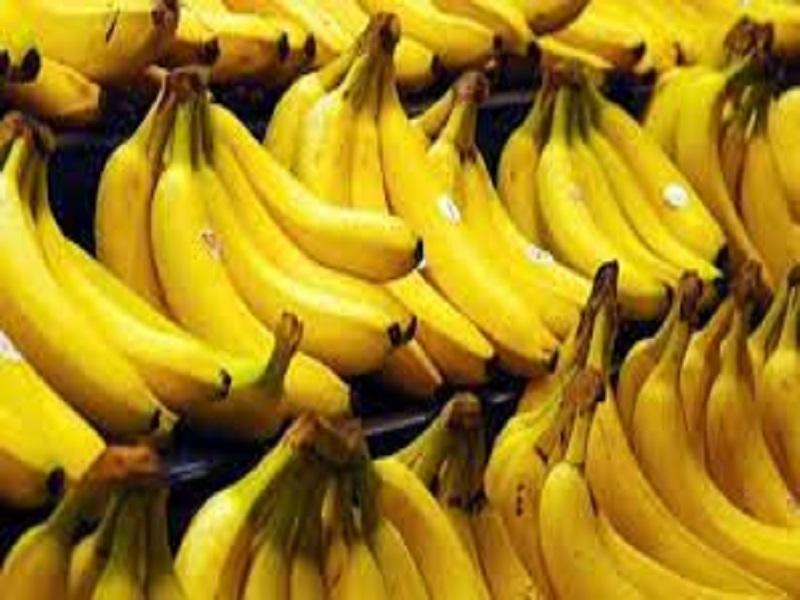Banana get GI Tag (Image Credit - Google)