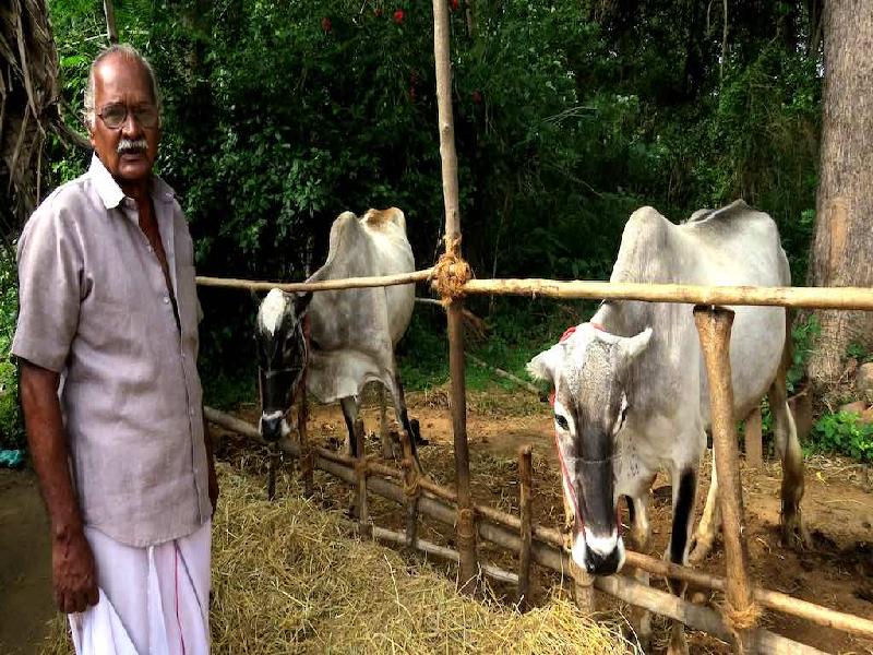 Successful Farmer (Image Credit - Google)