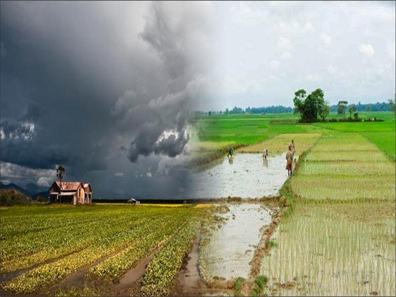 Latest Weather (Image Credit - Google)