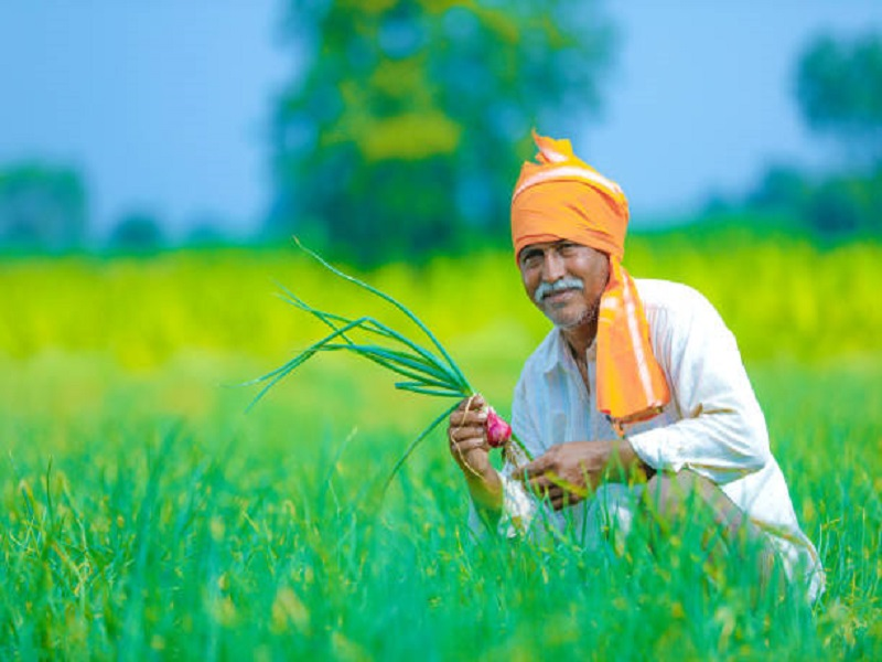 Farmers Scheme (Image Credit - Google)