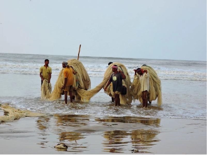 Fisherman (Image Credit - Google)