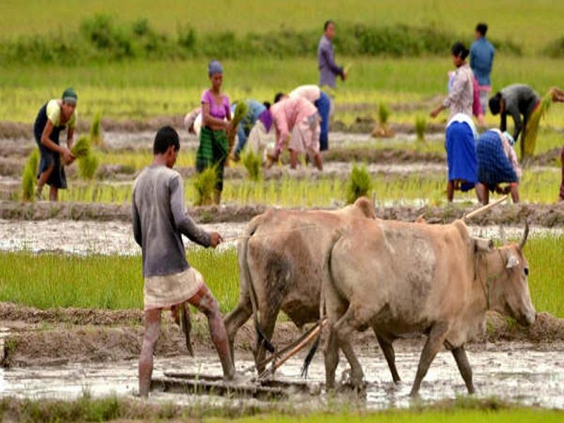 Bangla Sashya Bima Scheme (image credit- Google)