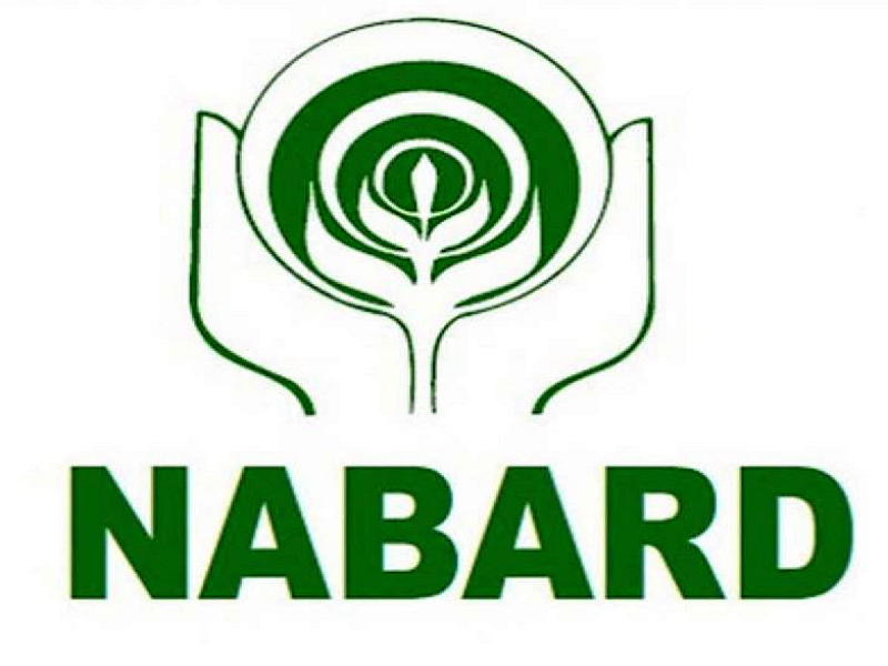 Nabard Job (Image Credit - Google)