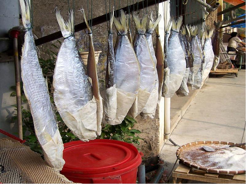 Fish conservation (Image Credit - Google)