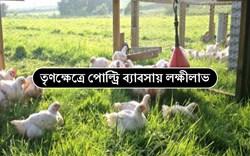 Pastured Poultry Farming: কিভাবে চারণভূমিতে হাঁস, মুরগি পালন শুরু করবেন?
