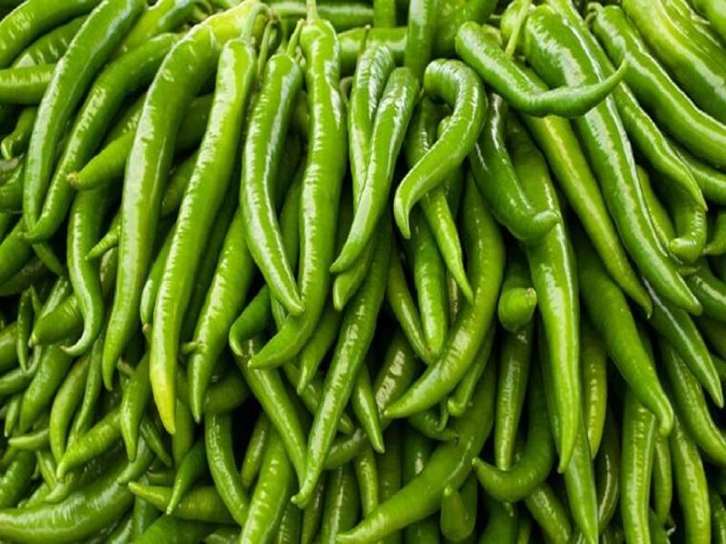 Green chilli (image credit- Google)