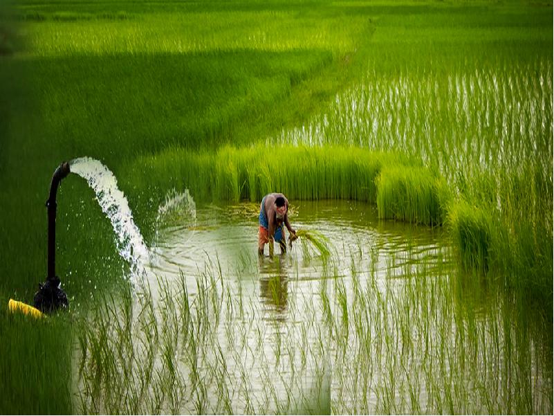 Irrigation Scheme (Image Credit - Google)