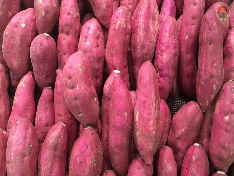 Sweet Potatoes Framing
