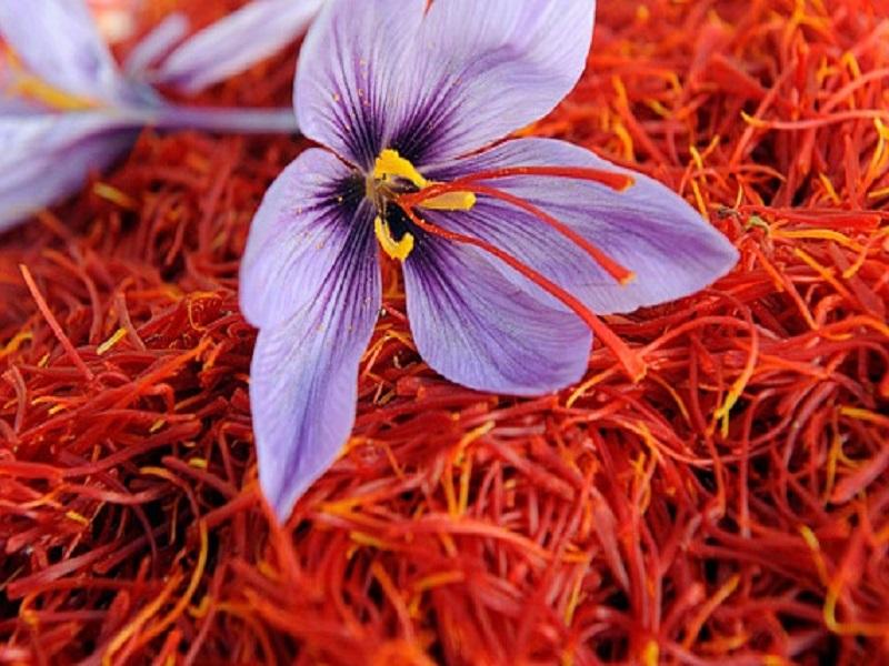Saffron (image credit- Google)