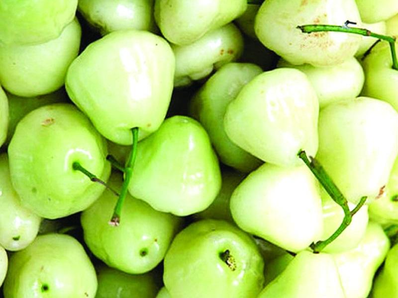 Bell fruit (image credit- Google)