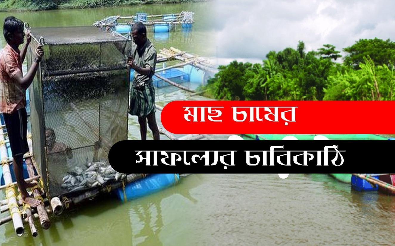Cage fish farming: খাঁচায় মাছ চাষ করে কৃষকদের ব্যাপক সাফল্য