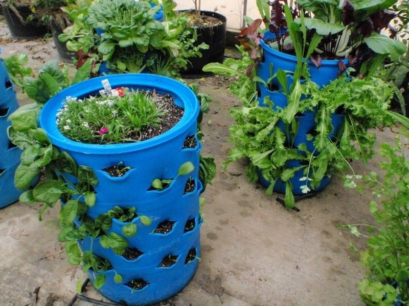 Terrace farming by using drum (Image Credit - Google)
