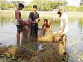 Profitable Fish Farming - মাছের উৎপাদন বৃদ্ধির সহজ উপায়