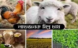 Importance of integrated farming: মিশ্র চাষ করে কৃষকবন্ধুরা করতে পারেন দ্বিগুন উপার্জন