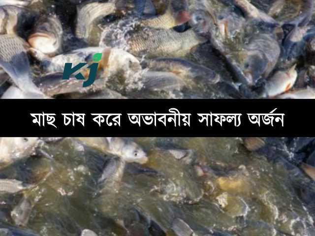 মাছ চাষ (Fisheries) করে প্রায় ১৪ লক্ষ টাকা উপার্জন, কৃষকের সাফল্য অনুপ্রেরণা জোগাবে আপনাকেও