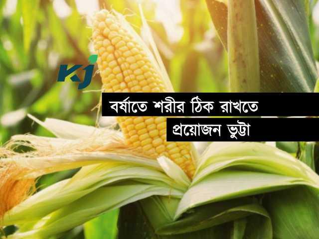 বর্ষায় শরীর ভালো রাখবে ভুট্টা (Benefits of Maize), জেনে নিন এর উপকারিতা