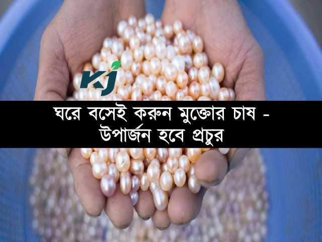 স্বল্প ব্যয়ে প্রচুর মুনাফা, কৃষক ঘরে বসেই শুরু করুন (Pearl Cultivation) মুক্তোর চাষ