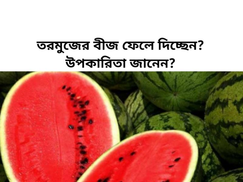 তরমুজের বীজে রয়েছে প্রচুর গুন (Benefits of Watermelon Seeds), জানলে আর ফেলতে পারবেন না