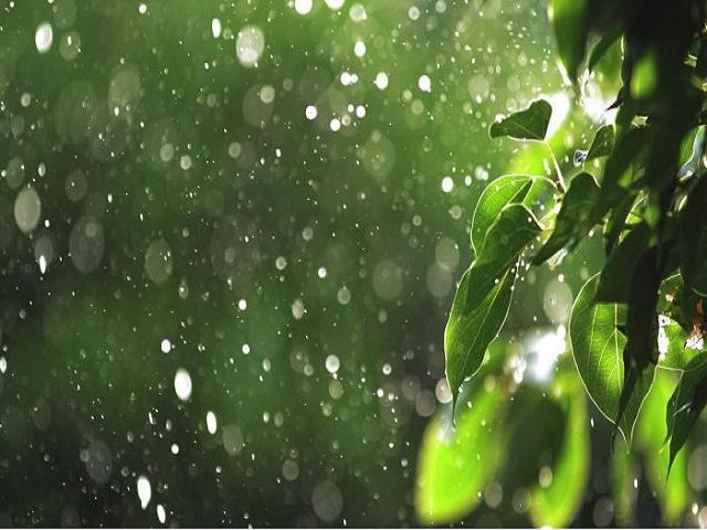 Monsoon - Rainfall