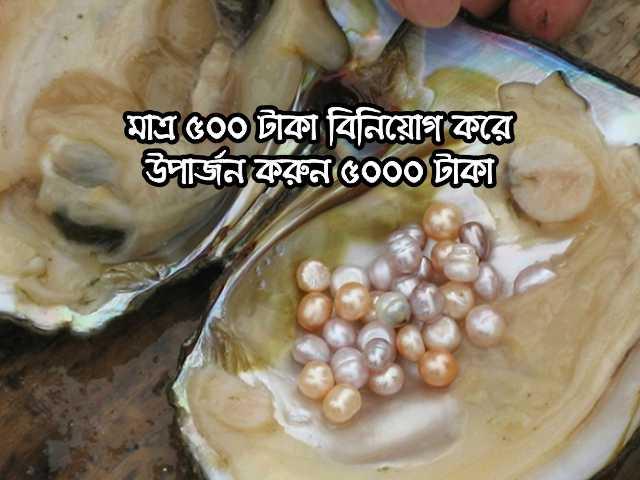 (Earn 5000 rupees income by investing 500) ৫০০ টাকা বিনিয়োগে ৫০০০ টাকা আয়! মুক্তো চাষে সফল কৃষক