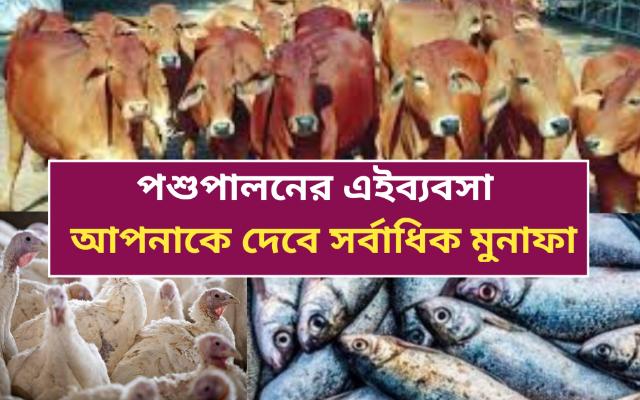 (Unique business ideas for animal husbandry) পশুপালনের কয়েকটি অভিনব ব্যবসায়িক ধারণা, যা দেবে আপনাকে কম বিনিয়োগে বেশী অর্থোপার্জন