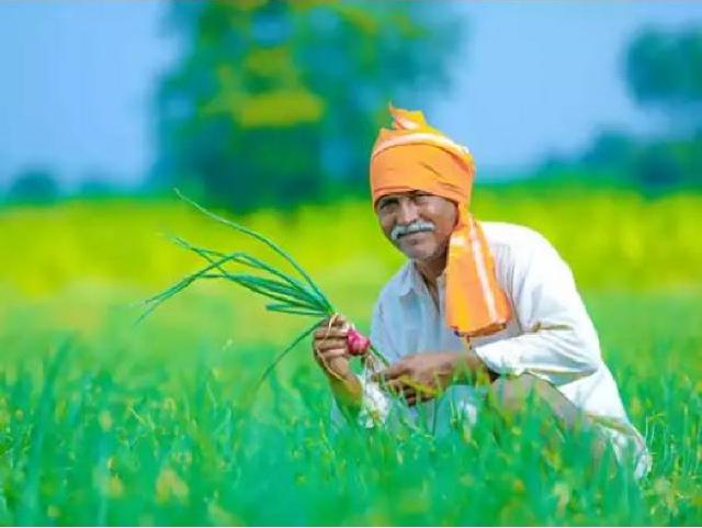 Digital application for farmer