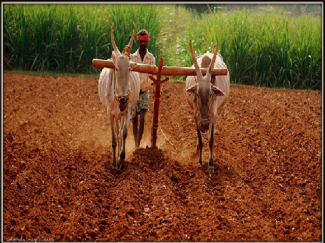 Loan for farmer