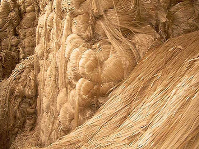 Biodegradable jute fiber