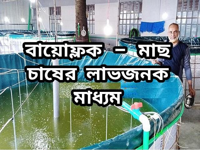 (Biofloc system- Fish farming) বায়োফ্লকে মাছ চাষ করে দ্বিগুণ উপার্জন করুন