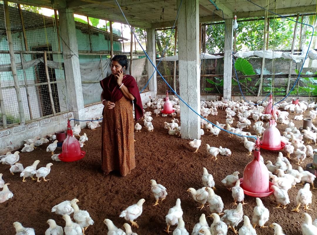 (Reliance Foundation) রিলায়েন্স ফাউন্ডেশনের সহায়তায় সফল মহিলা কৃষক লতা হালদার