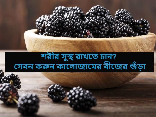 (Blackberry health benefit) প্রোটিন, আয়রন, ফাইবারে সমৃদ্ধ কালোজামের বীজের গুঁড়া কেন সেবন করবেন? কি এর উপকারিতা?