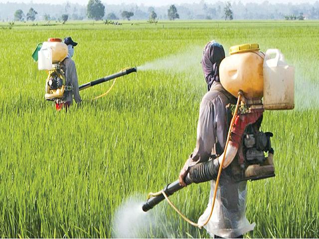Spraying Fertilizer on crops