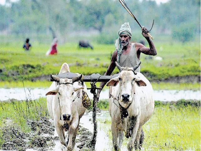 Govt scheme for WB  farmer