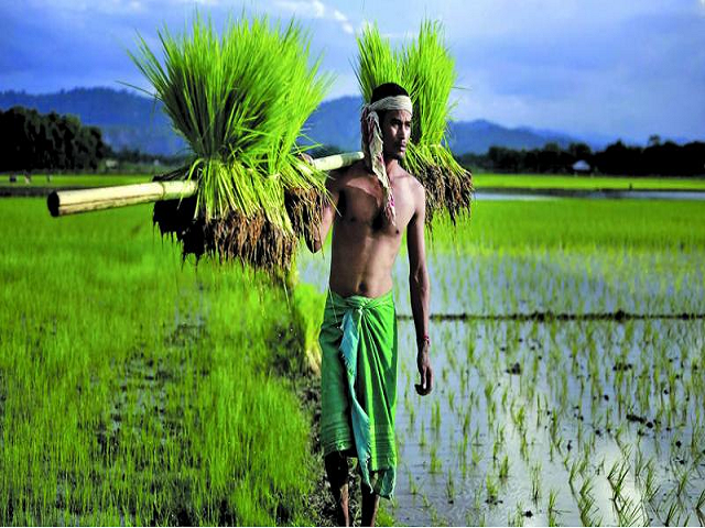 Crop insurance - Fasal Bima Yojana