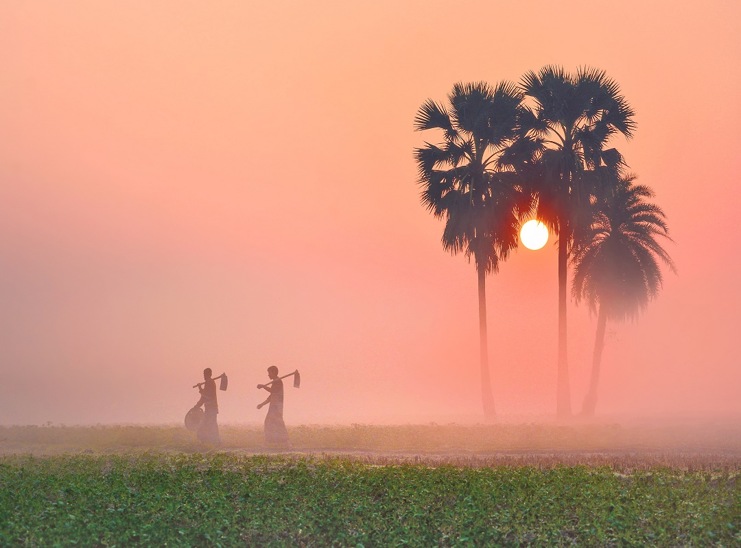 (Todays weather) সপ্তাহ শেষে রাজ্যে শীতের আমেজ, বৃষ্টিপাত ৮ জেলায়