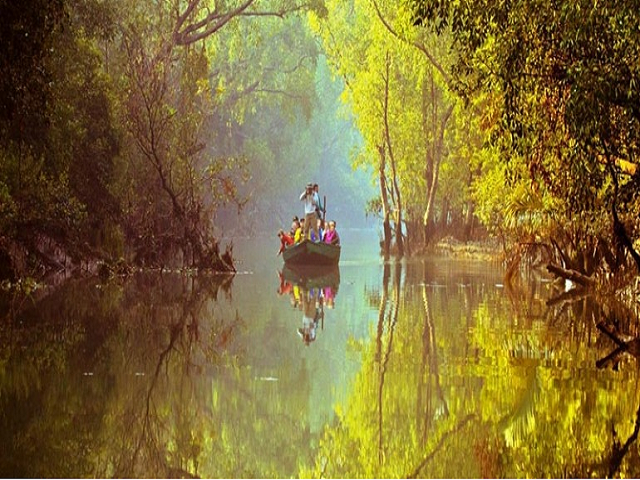 (Sundarban the thrill of this winter) এই শীতে রোমাঞ্চ রস আস্বাদন করতে বেড়িয়ে আসুন সুন্দরবন
