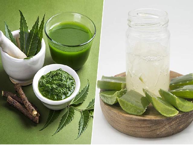 (Immunity booster drink) নিম ও অ্যালোভেরা থেকে তৈরি জুস – ওজন হ্রাসের সাথে ইমিউনিটি বুস্টার