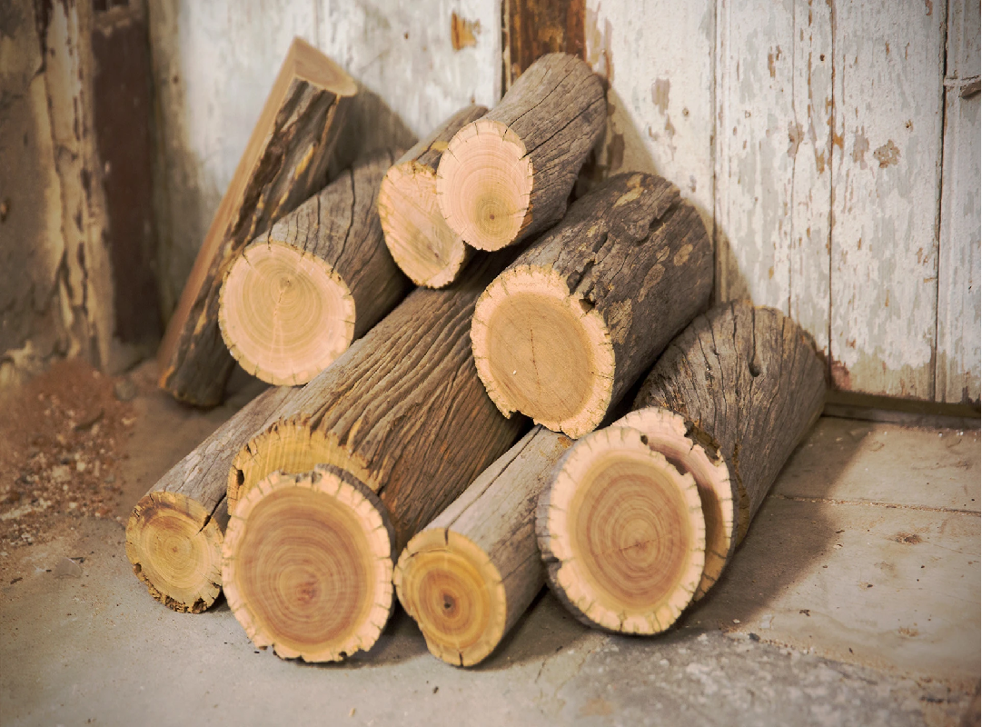 Start Profitable Business with sandalwood